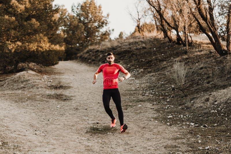 Homme courant de sport dans la course de traînée de pays croisé Formation masculine convenable d'exercice de coureur et sauter de photo libre de droits