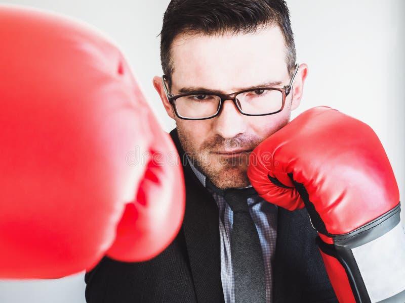 Homme d'affaires et gants de boxe rouges photo stock