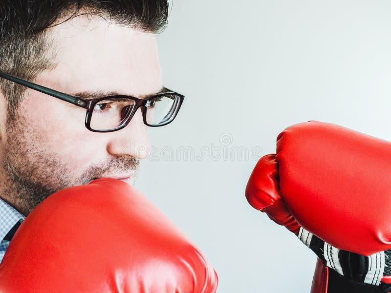 Homme d'affaires et gants de boxe rouges photographie stock