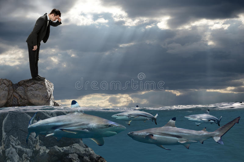 Homme d'affaires Looking aux requins nageant photographie stock