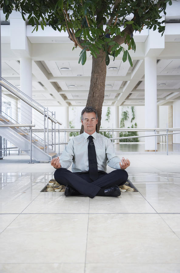 Homme d'affaires Meditating Under Tree photographie stock