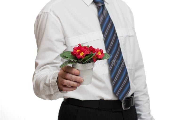 Homme d'affaires romantique photos stock