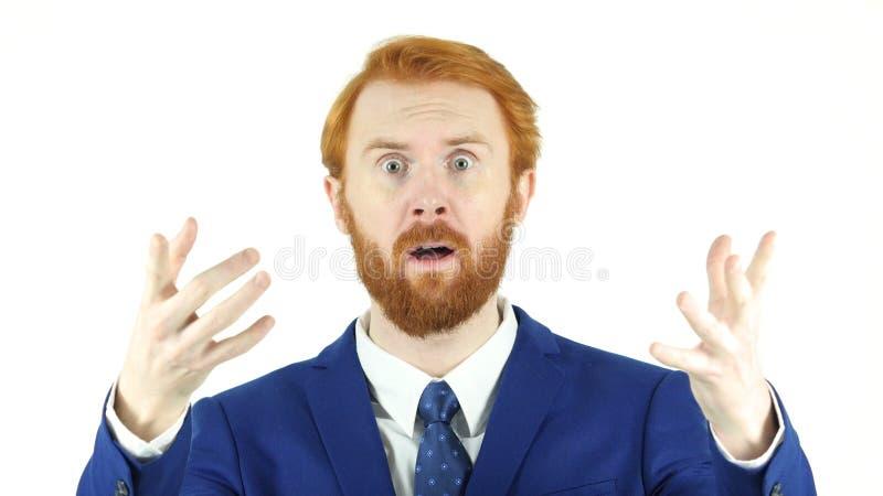 Homme d'affaires rouge fâché Talking de barbe de cheveux avec l'équipe, fond blanc images libres de droits