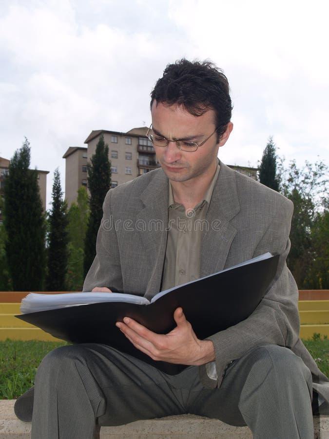 Download Homme D'affaires Travaillant Au Stationnement Image stock - Image du nature, procès: 734231