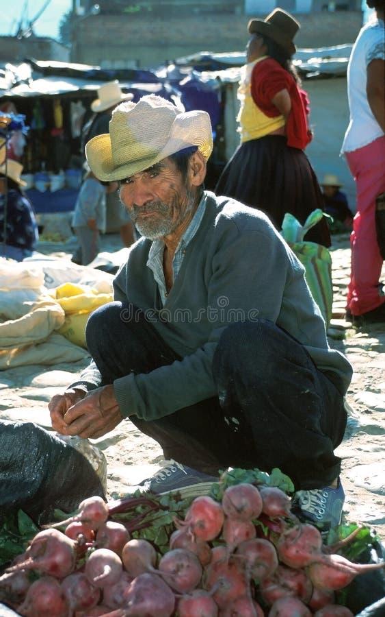 Homme d'Amerindian photo stock