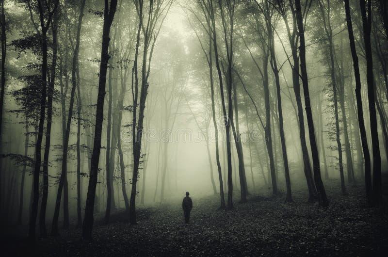 Homme dans la forêt fantasmagorique foncée avec le brouillard photographie stock libre de droits