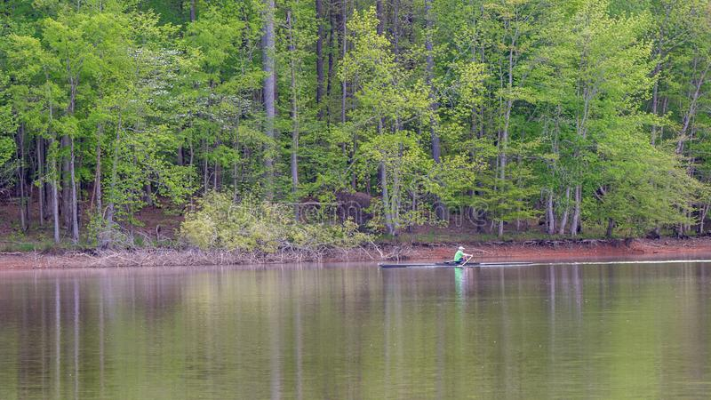 Homme dans le bateau d'?quipage sur l'aviron de lac avec des arbres ? l'arri?re-plan image stock