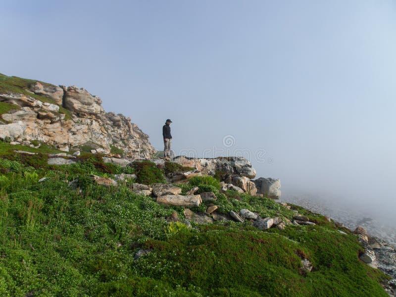 Homme dans le brouillard image libre de droits