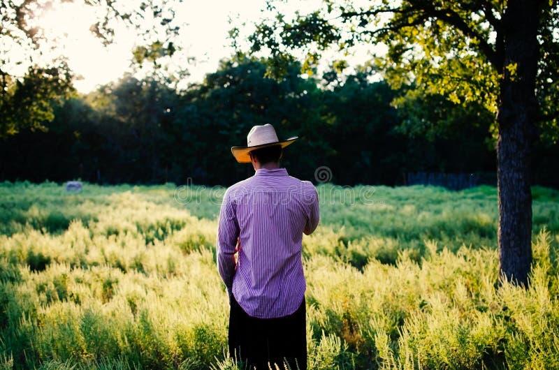 Homme dans le chapeau de cowboy regardant loin au-dessus du champ rural photo stock