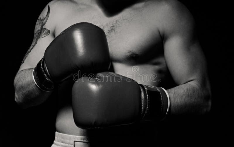 Homme de boxeur mettant des gants de boxe images libres de droits