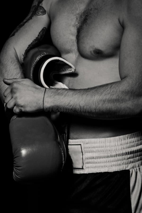 Homme de boxeur mettant des gants de boxe image libre de droits