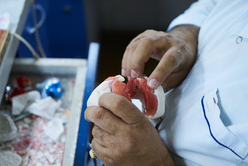 Homme de dentiste de technicien dentaire travaillant avec des dentiers image stock