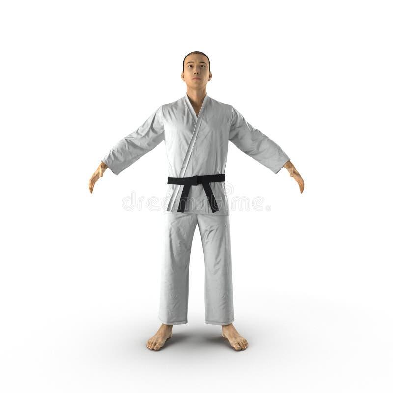 Homme de karaté dans un kimono sur le blanc illustration 3D illustration stock