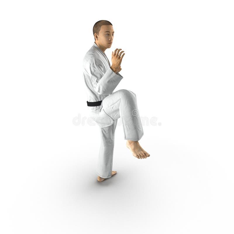 Homme de karaté dans un kimono sur le blanc illustration 3D illustration de vecteur
