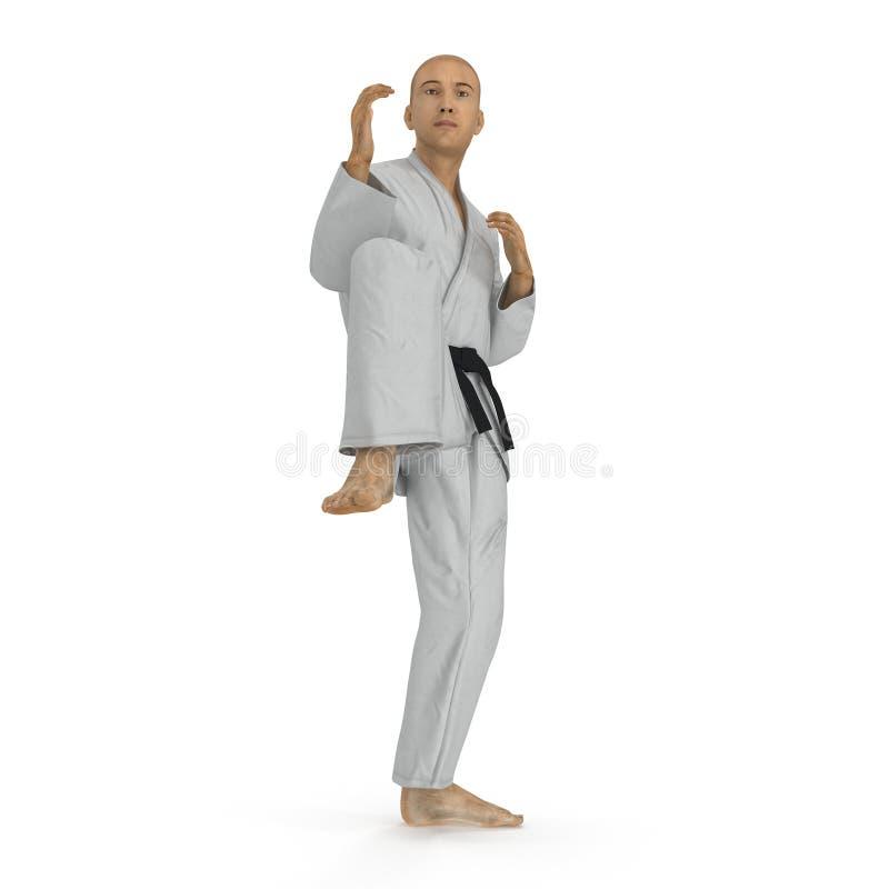 Homme de karaté dans une pose de combat de kimono sur le blanc illustration 3D illustration de vecteur