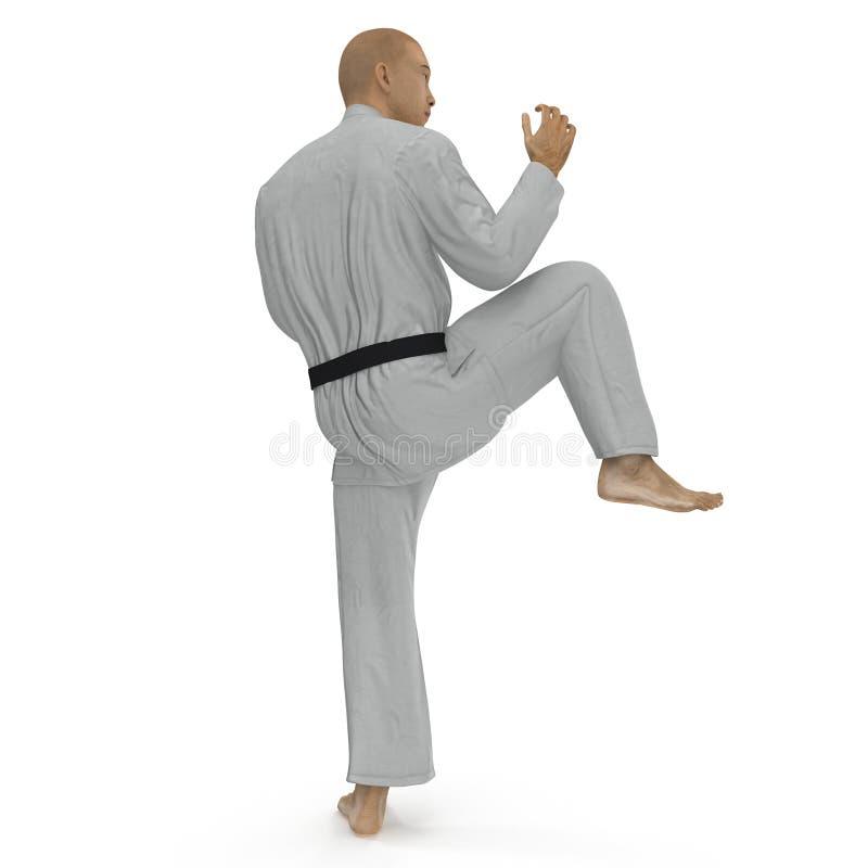 Homme de karaté dans une pose de combat de kimono sur le blanc illustration 3D illustration stock
