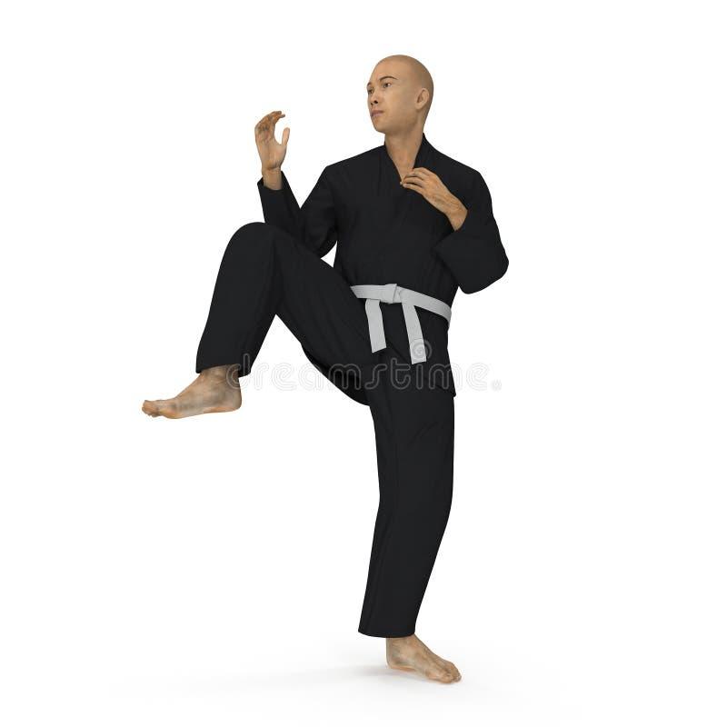 Homme de karaté dans une pose noire de combat de kimono sur le blanc illustration 3D illustration de vecteur