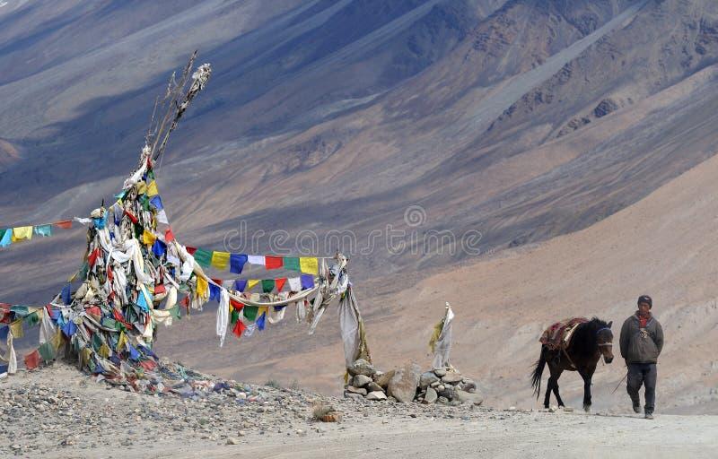 Homme de Ladakhi avec le cheval photographie stock libre de droits