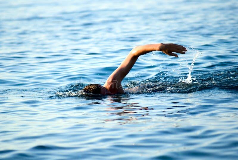 Homme de natation image stock