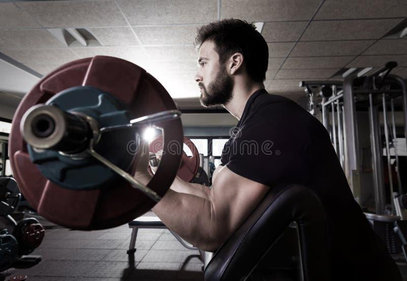 Homme de séance d'entraînement de boucle de bras de banc de prédicateur de biceps au gymnase images libres de droits