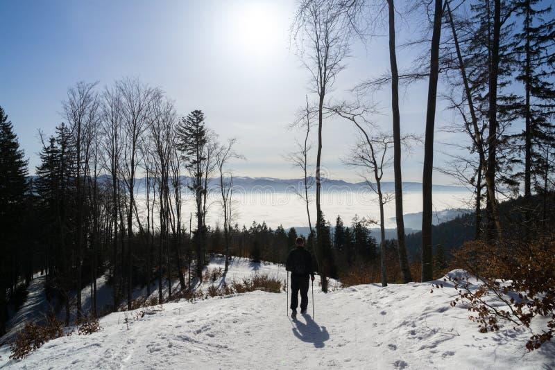 Homme de Skialpining dans la for?t couverte dans la neige pendant l'hiver slovakia images libres de droits