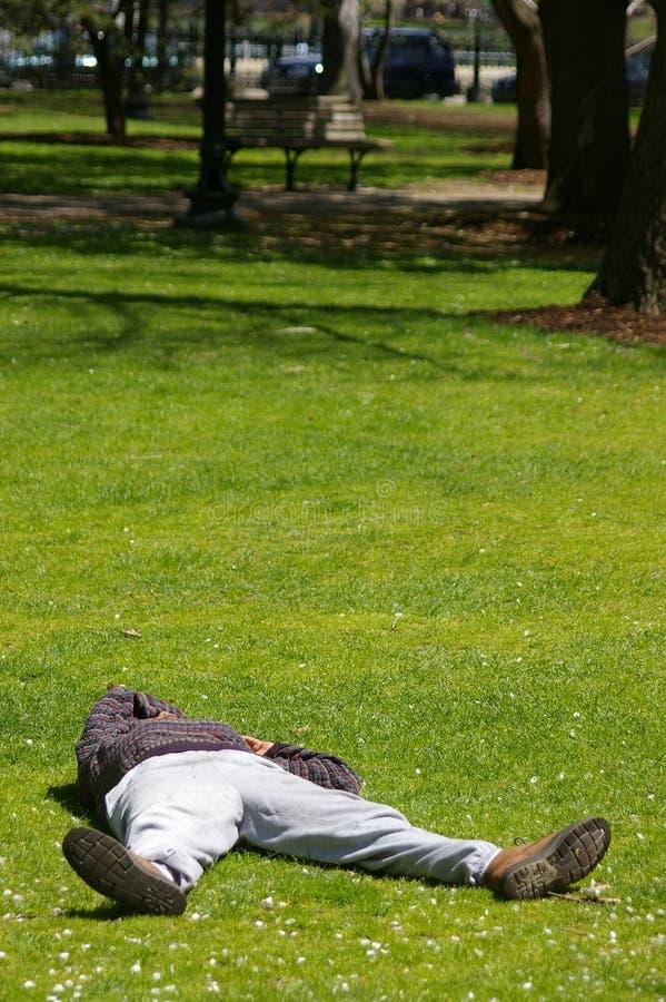 Download Homme de sommeil photo stock. Image du homme, sommeil, jardin - 739472