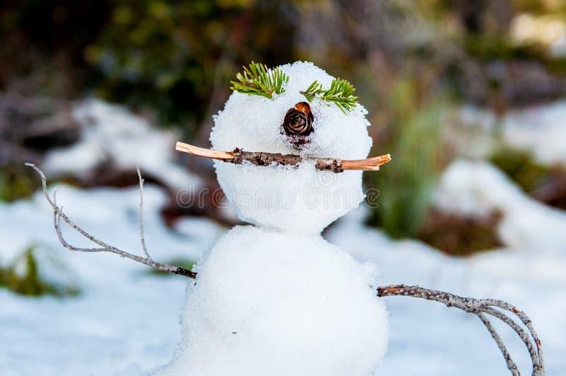Homme de sourire mignon de neige image libre de droits