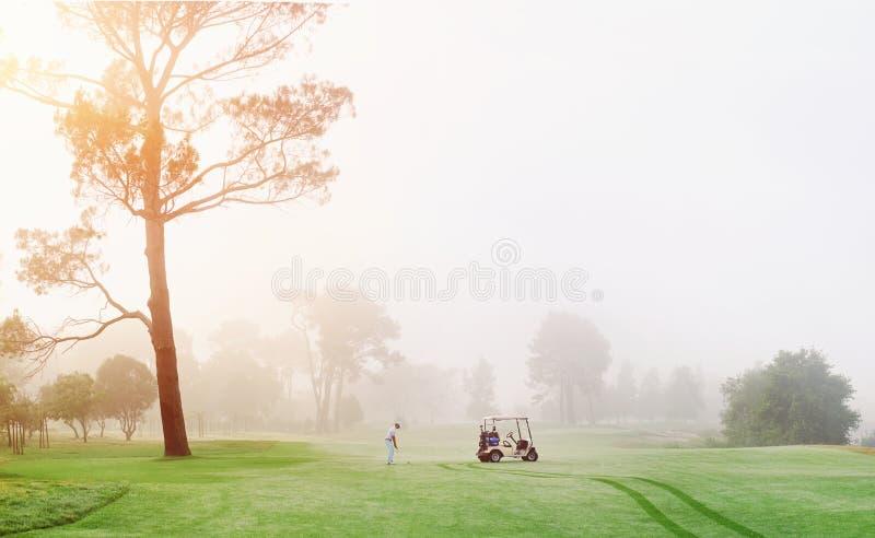 Homme de terrain de golf photo stock