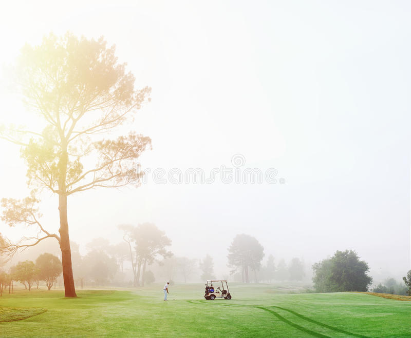 Homme de terrain de golf photo libre de droits