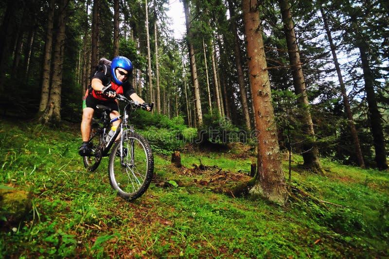 Homme de vélo de support extérieur photo stock