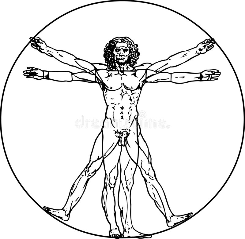 Homme de Vitruvian illustration stock
