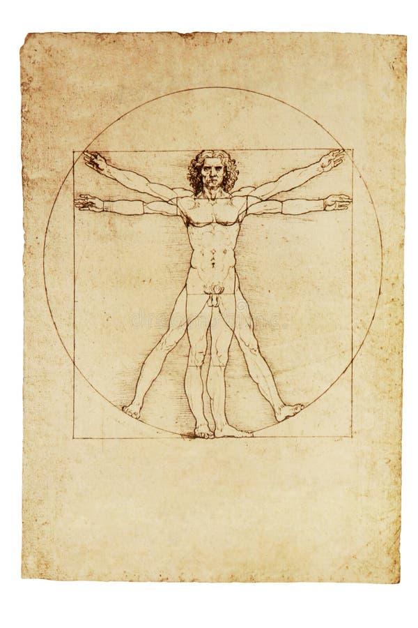 Homme de Vitruvian de Da Vinci photos libres de droits