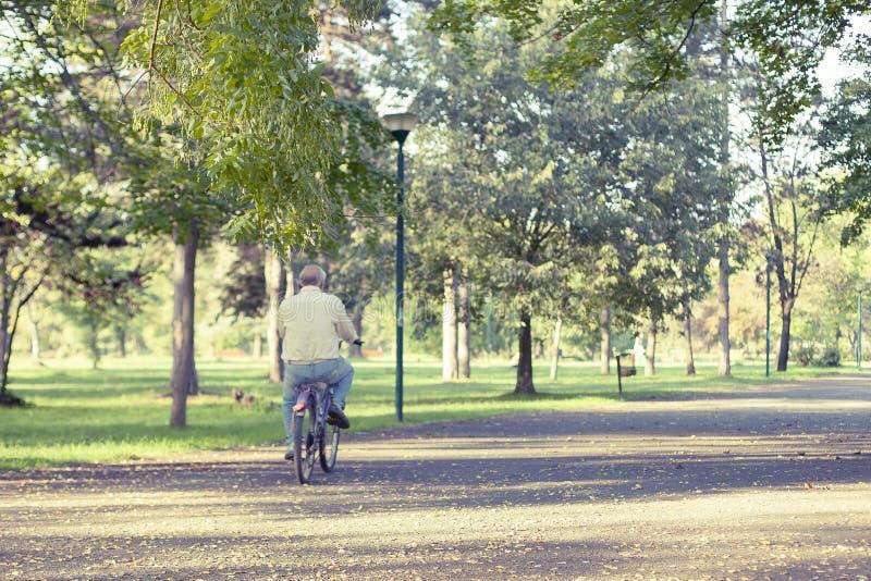 Homme en parc photo libre de droits