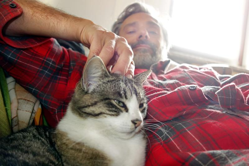 Homme et chat images stock