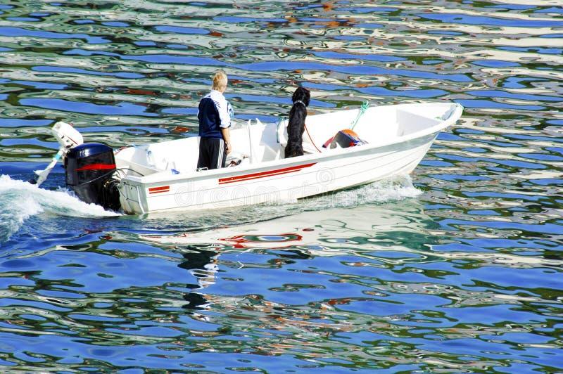 Homme et chien se tenant dans le bateau sur la mer de couleurs - réflexions colorées sur l'Océan Atlantique en Norvège photo stock