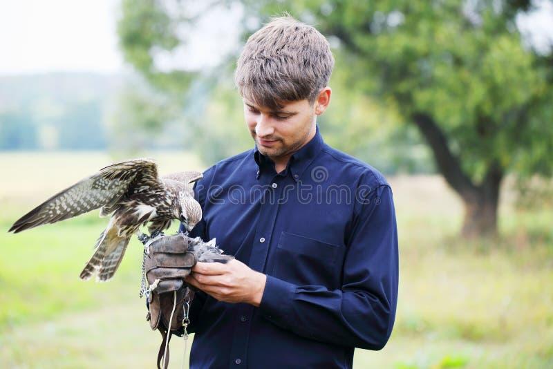 Homme et faucon photo stock