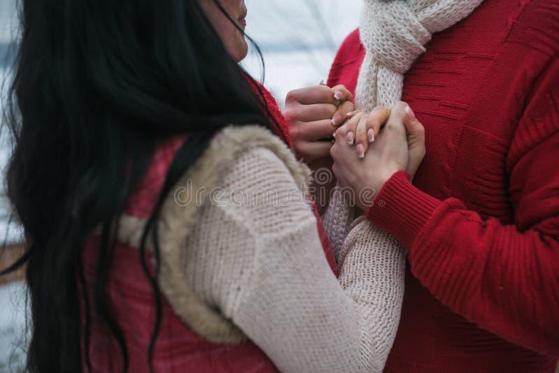 Download Homme Et Femme étreignant En Parc Couvert De Neige Photo stock - Image du amour, vêtement: 76076982