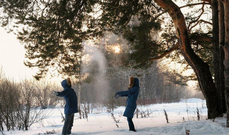 Homme et femme jouant des boules de neige dans le coucher du soleil de forêt d'hiver dans la forêt d'hiver photo stock