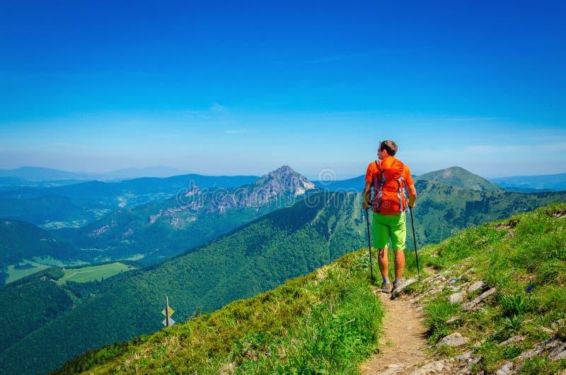 Homme et sac à dos orange sur la traînée de montagne Slovaquie photos libres de droits