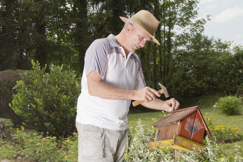 Homme fixant le vieux maison-plan rapproché d'oiseau image libre de droits