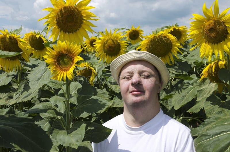 Homme heureux avec le syndrome de doem appréciant le jour ensoleillé dans le domaine de tournesol Heureux et joyeux images libres de droits