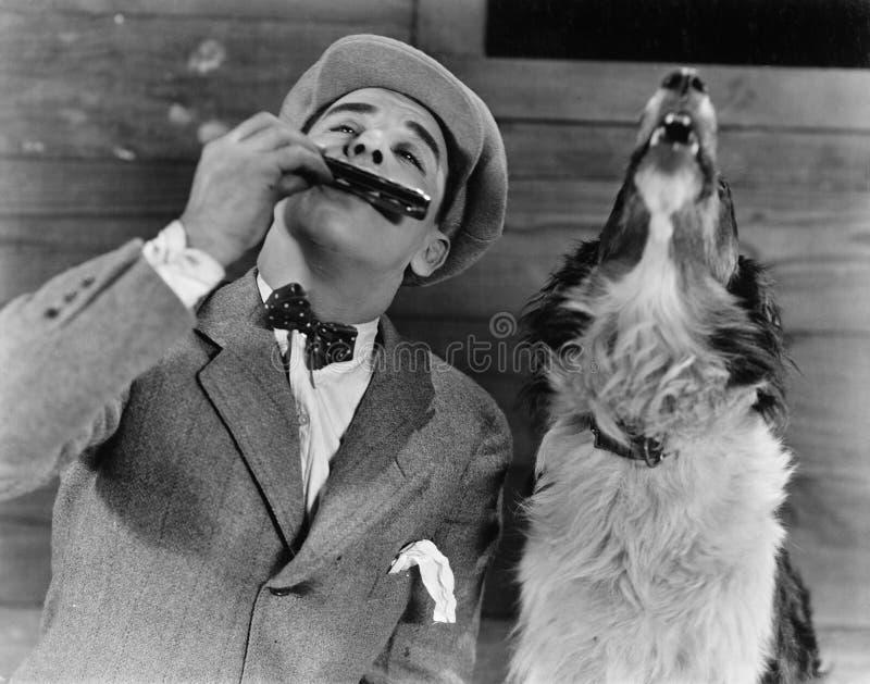 Homme jouant l'harmonica avec le chien d'hurlement (toutes les personnes représentées ne sont pas plus long vivantes et aucun dom photographie stock