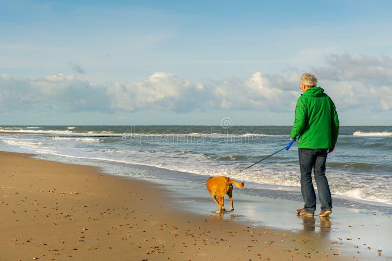 Homme marchant avec le crabot à la plage photos libres de droits