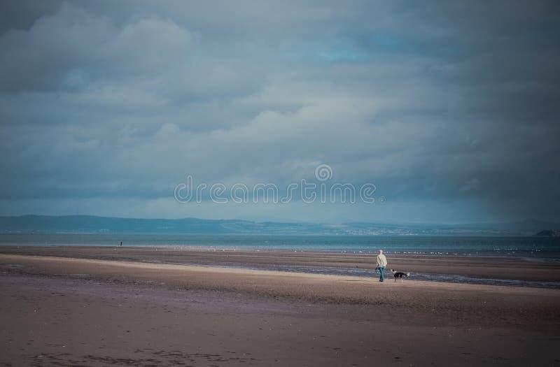 Homme marchant le chien sur la plage images libres de droits