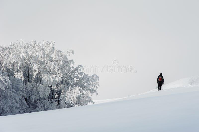 Homme marchant par les montagnes photos stock