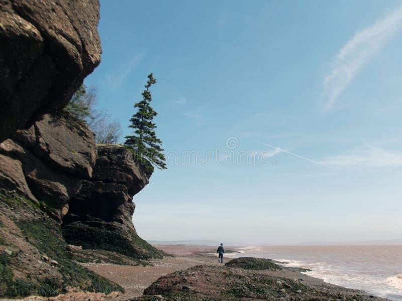 Homme marchant sous les falaises sur la plage photo libre de droits
