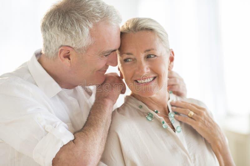 Homme mettant le collier autour du cou de la femme à la maison photos stock