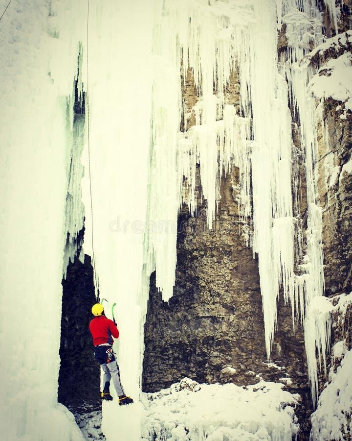 Homme montant la cascade congelée photos libres de droits
