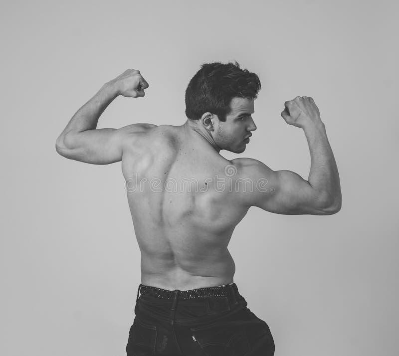 Homme musclé de jeune forme physique montrant le sien muscles de retour, d'épaules, de triceps et de biceps après la formation photo libre de droits