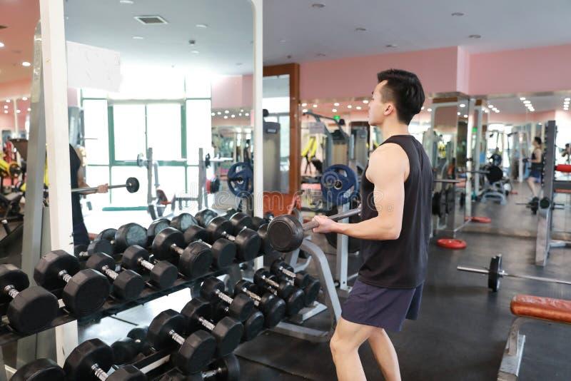 Homme musculaire établissant dans le gymnase faisant des exercices avec des haltères aux biceps, ABS nu masculin fort de torse images stock